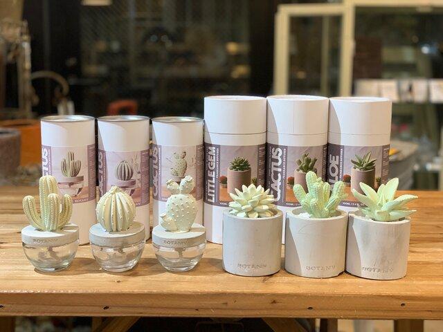 Cactus fragrance diffuser 各1,980円(左3つ)/各2,640円(右3つ)