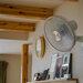 おすすめ壁掛け扇風機をご紹介! 選び方のポイントも覚えよう