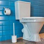 一人暮らしのトイレ掃除の最適な頻度は?おすすめグッズや掃除のコツを紹介 - とりぐら|一人暮らしの毎日がもっと楽しく