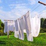 干し方で乾くまでの時間短縮! 上手に洗濯物を干す方法 - とりぐら|一人暮らしの毎日がもっと楽しく