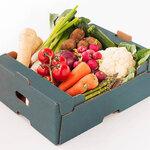 野菜宅配サービスで一人暮らしの食生活を健康的に! サービス選びのポイントとは - とりぐら 一人暮らしの毎日がもっと楽しく