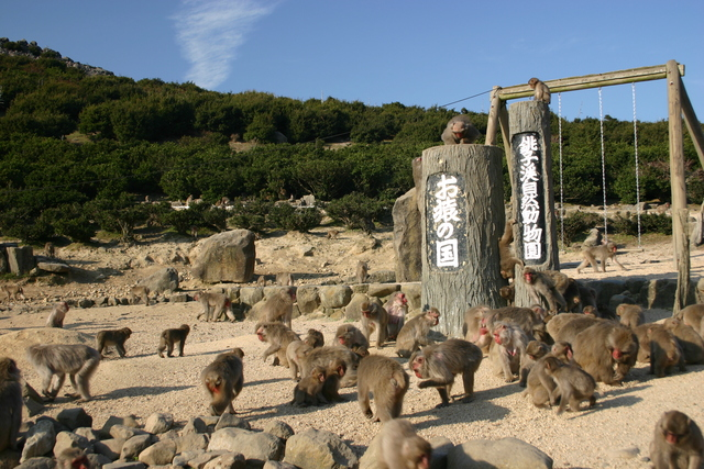 © Kagawa Prefecture Tourism Association (302)