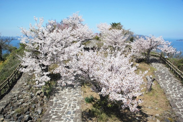 © Kagawa Prefecture Tourism Association (345)