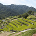 VISIT TRADITIONAL JAPANESE FARMING LANDSCAPES IN SHODOSHIMA