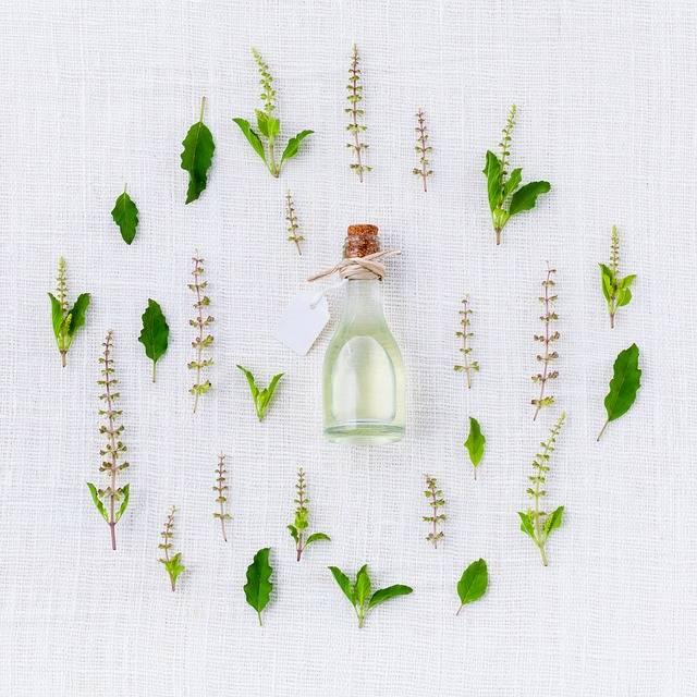 Aroma Basil Spices · Free photo on Pixabay (21210)