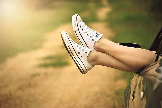 Legs Window Car Dirt · Free photo on Pixabay (37295)