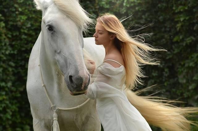 Girl Daydreaming Horse · Free photo on Pixabay (43389)