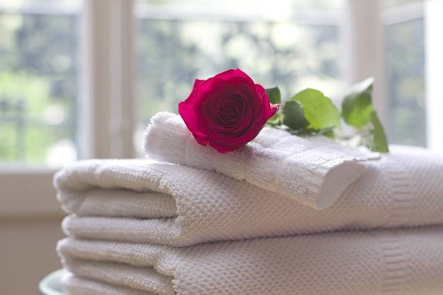 Towel Rose Clean · Free photo on Pixabay (60928)