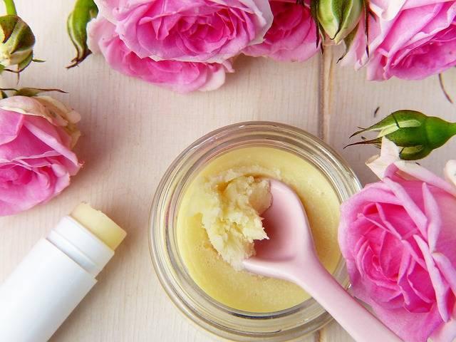 Flower Rose Cream · Free photo on Pixabay (84399)