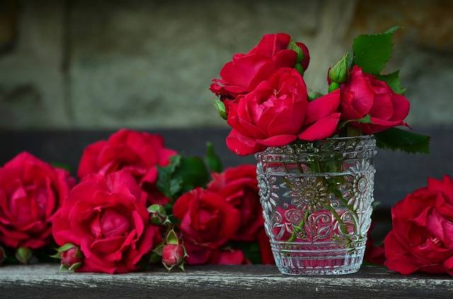 Roses Red Bouquet Of · Free photo on Pixabay (102506)