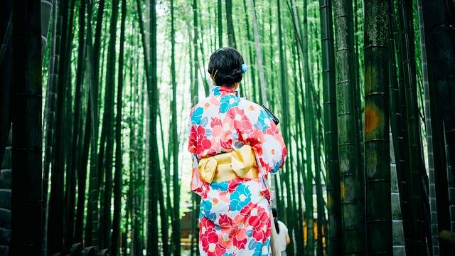 Bamboo Trees Girl Kimono · Free photo on Pixabay (119026)
