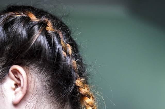 Hairstyle Braids Plait · Free photo on Pixabay (121744)