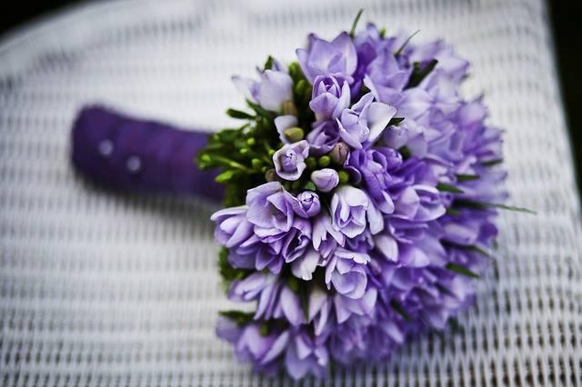 Marriage Flower Purple Flowers · Free photo on Pixabay (123454)