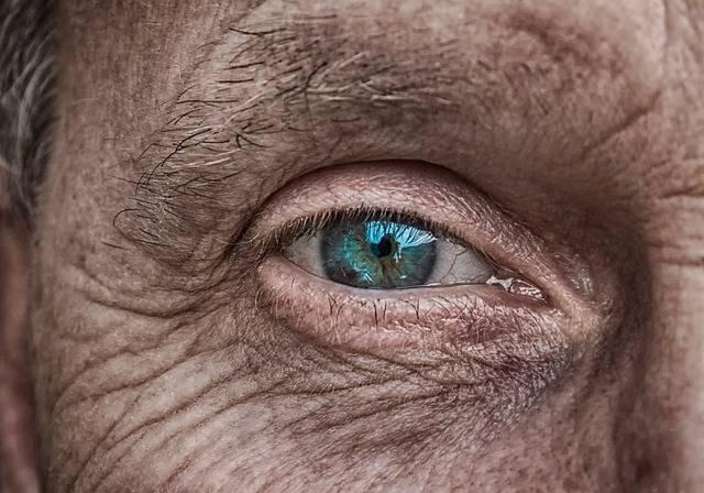 Skin Eye Iris · Free photo on Pixabay (123894)
