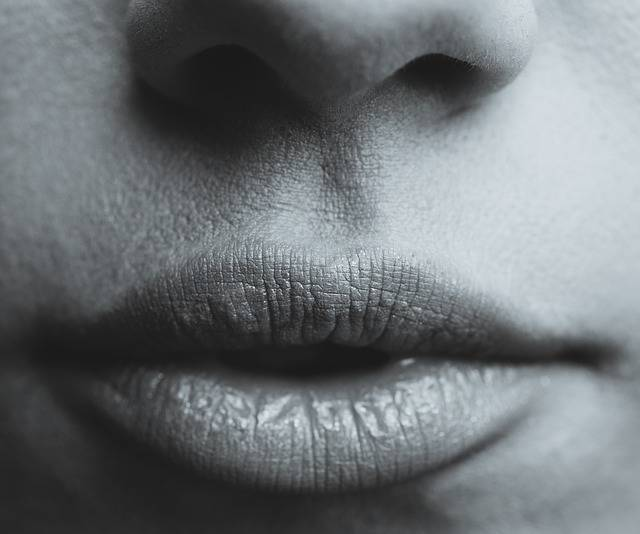 Lips Seduction Sexy · Free photo on Pixabay (133558)