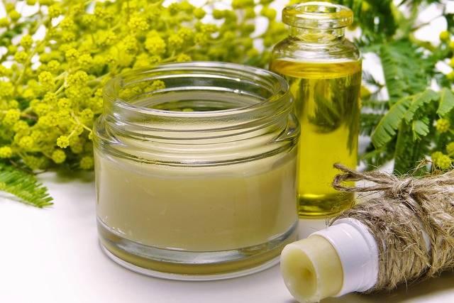 Cream Mimosa Lipstick · Free photo on Pixabay (133564)