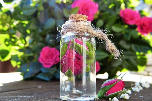 Rose Water Glass · Free photo on Pixabay (137506)