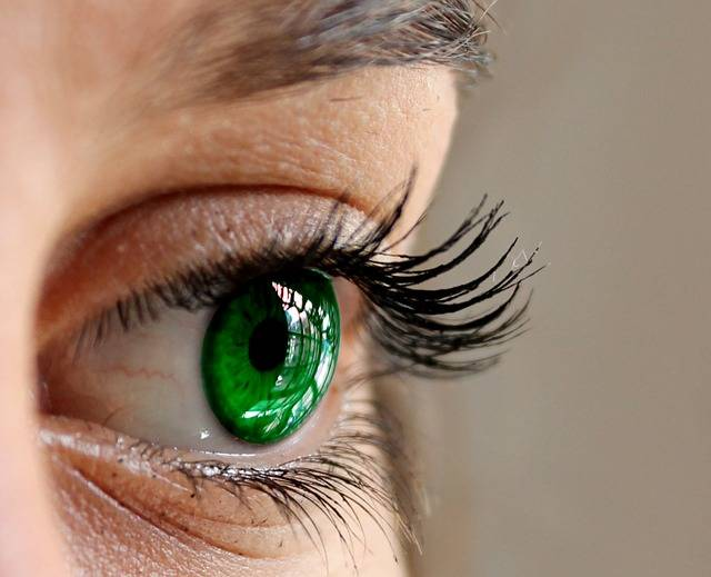 Eyes Green Close Up · Free photo on Pixabay (140324)