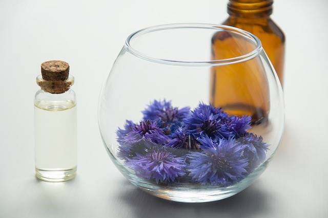 Essential Oils Cosmetology Oil · Free photo on Pixabay (147121)
