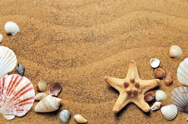Sea Sand Coast · Free photo on Pixabay (149039)