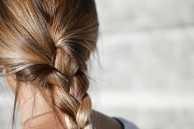 Blur Braided Hair Brunette · Free photo on Pixabay (154368)