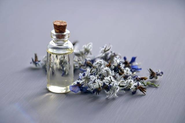 Cosmetic Oil Natural · Free photo on Pixabay (156756)
