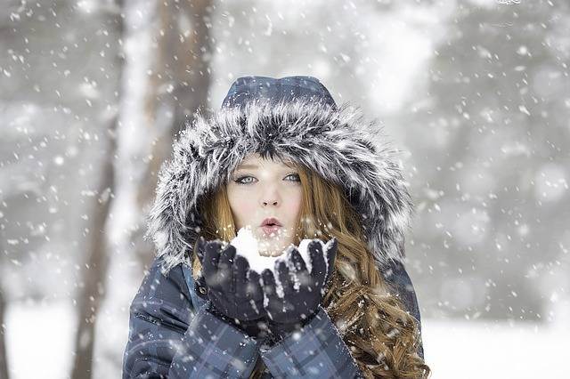 Winter Redhead Female · Free photo on Pixabay (160610)