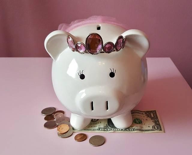 Piggy Bank Pig · Free photo on Pixabay (164522)