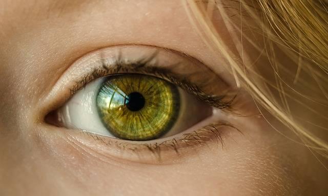Eye Iris Look · Free photo on Pixabay (171230)