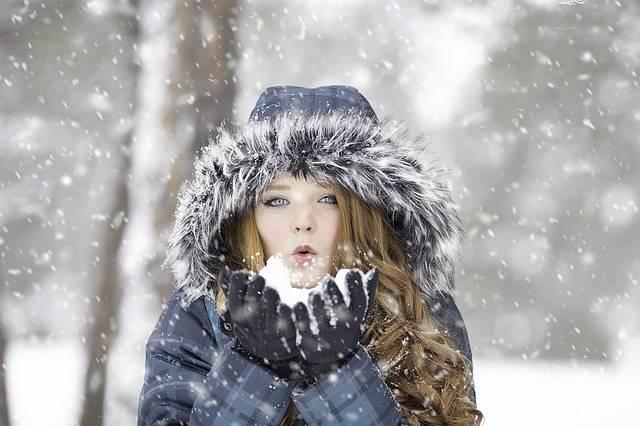 Winter Redhead Female - Free photo on Pixabay (180488)