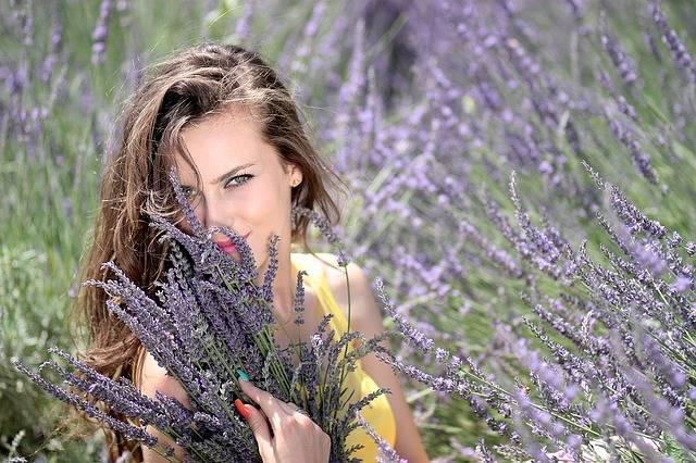 Girl Lavender Flowers - Free photo on Pixabay (186298)