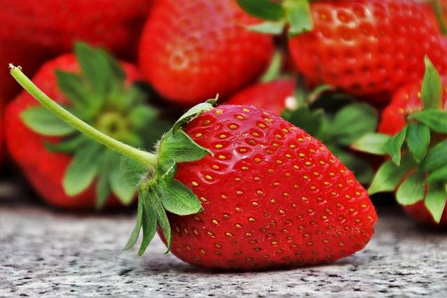 Strawberries Fruit Season - Free photo on Pixabay (218821)