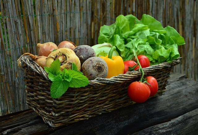 Vegetables Vegetable Basket - Free photo on Pixabay (250248)