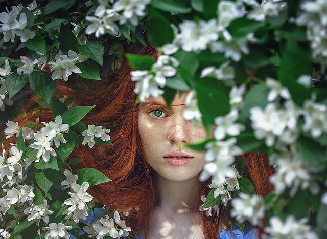 Girl Beauty Fairytales - Free photo on Pixabay (257067)