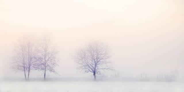 Winter Landscape Trees Snow - Free photo on Pixabay (257069)