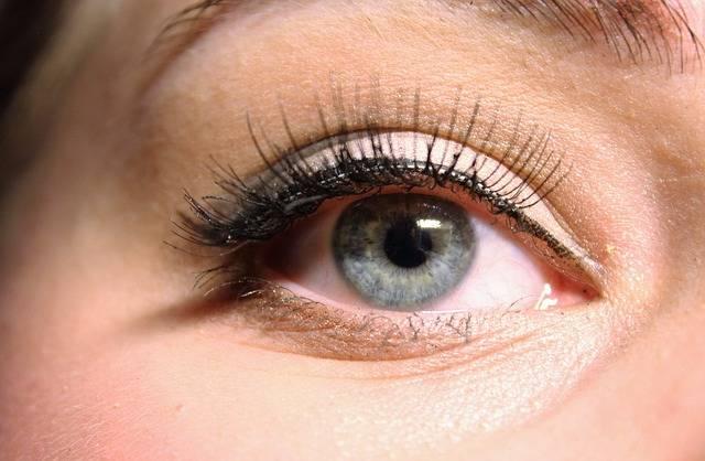 The Eye Blue False Lashes - Free photo on Pixabay (268136)