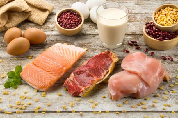 1日に必要なタンパク質の量