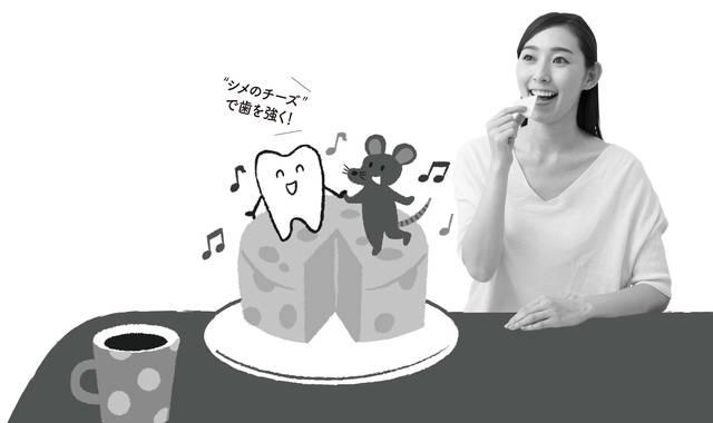 「シメのチーズ」がエナメル質を保護、歯を丈夫にする!