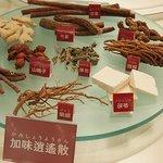漢方っていいの?「ツムラ漢方記念館」見学で、魅力をリサーチ!