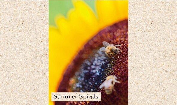 エネルギーを蓄える「冬」に、生命が活発に動く「夏」を想う