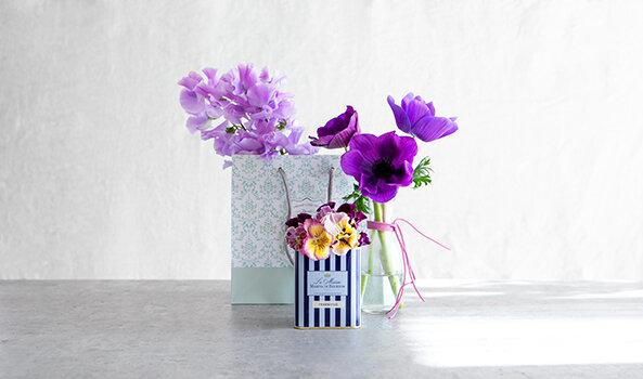家にあるビン・缶を活用して、すてきに飾るには?|季節の花 活け方レッスン(5)