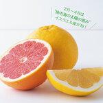 低糖質で抗酸化物質たっぷり!グレープフルーツを美容や免疫力の応援に