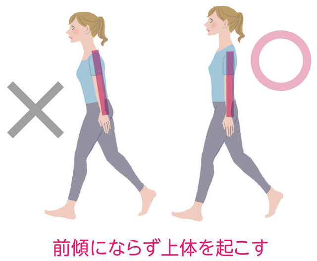 「ゆるかかと歩き」のメカニズム