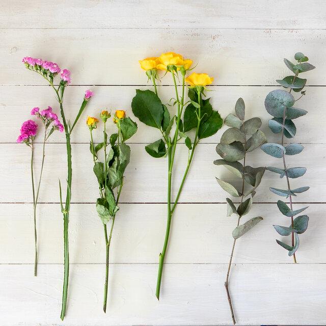 ドライフラワーに向いている花、向かない花