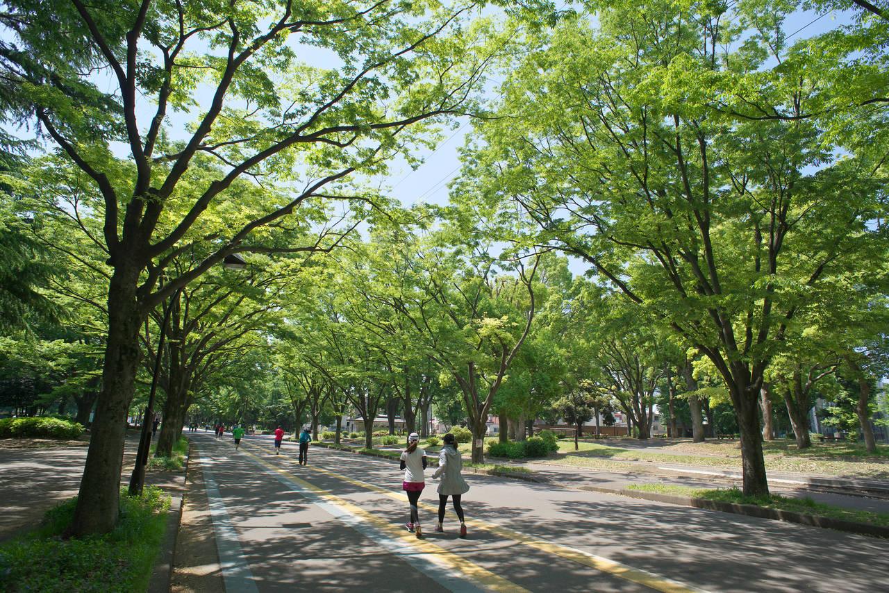 【早上景點】利用早晨出門觀光兼運動,東京人氣運動景點看這裡