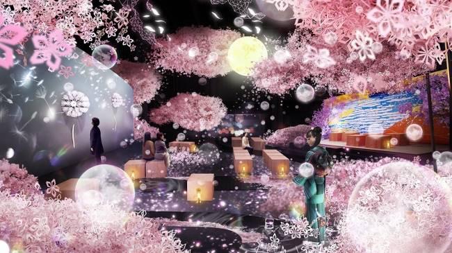 全日本最早的賞櫻活動!立頓限定櫻花飲品登場
