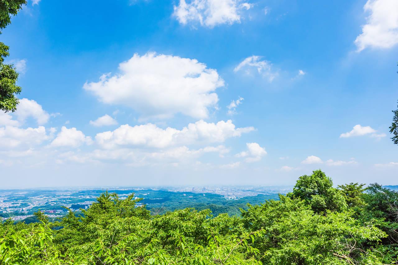 【過年春節好去處】祈求好運就到這裡! 4個東京近郊開運景點告訴你