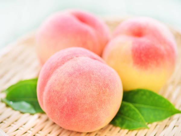 【日本47都道府縣的地方食材】桃子柿子還有地雞!福島縣的特產品與農作物