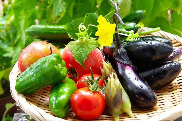 【日本蔬菜】夏季蔬菜到底有什麼不同?
