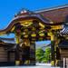 京都旅遊住宿首選 櫻花滿開的二条車站(二條車站)周邊介紹!